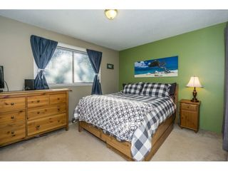 Photo 14: 2876 267A Street in Langley: Aldergrove Langley House for sale : MLS®# R2226858
