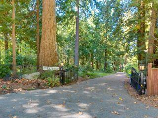 """Photo 6: 12929 CRESCENT Road in Surrey: Elgin Chantrell House for sale in """"CRESCENT ROAD"""" (South Surrey White Rock)  : MLS®# R2617700"""