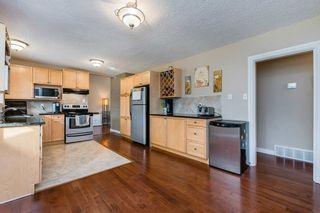 Photo 21: 22 BALMORAL Drive: St. Albert House for sale : MLS®# E4239500