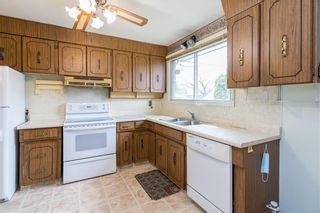 Photo 6: 420 Harold Avenue West in Winnipeg: West Transcona Residential for sale (3L)  : MLS®# 202110346