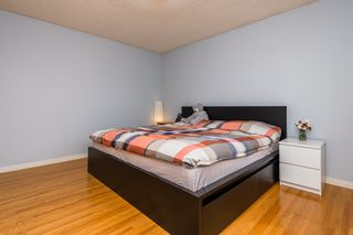Photo 19: 11408 54A Avenue in Edmonton: Zone 15 House for sale : MLS®# E4248731