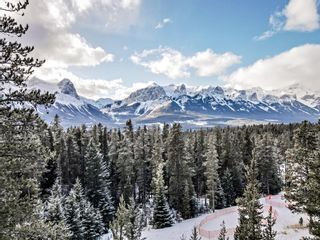 Photo 13: 865 Silvertip Heights: Canmore Detached for sale : MLS®# A1134072