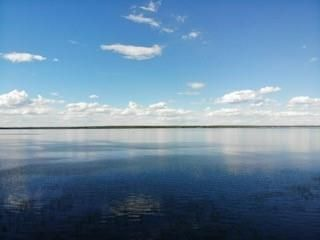 Photo 5: 54411 RR 40: Rural Lac Ste. Anne County Rural Land/Vacant Lot for sale : MLS®# E4239946