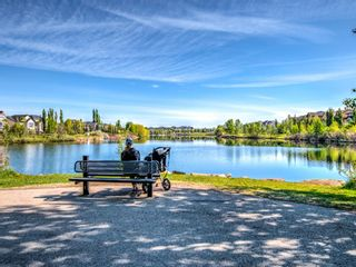 Photo 45: 71 Elgin Estates Hill SE in Calgary: McKenzie Towne Detached for sale : MLS®# A1031075