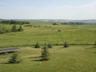 Photo 6: 322188 135 Street W: Rural Foothills County Detached for sale : MLS®# A1068193