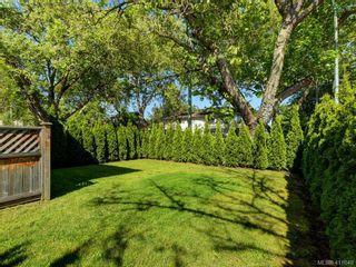 Photo 17: 1 1680 Ryan St in VICTORIA: Vi Oaklands Condo for sale (Victoria)  : MLS®# 816073