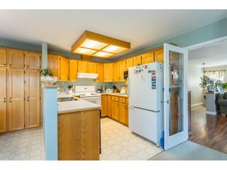 Photo 9: 23025 124B Street in Maple Ridge: East Central House for sale : MLS®# R2624726