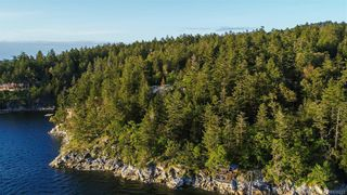 Photo 13: 8100 McPhail Rd in Central Saanich: CS Inlet Land for sale : MLS®# 838233