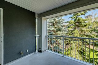 Photo 31: 338 35 Richard Court SW in Calgary: Lincoln Park Apartment for sale : MLS®# A1124714