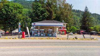 Photo 3: 43740 LOUGHEED Highway in Mission: Lake Errock Business with Property for sale : MLS®# C8039115