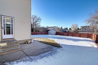 Photo 27: 3711 39 Street NE in Calgary: Whitehorn Detached for sale : MLS®# A1063183