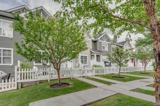 Photo 40: 385 Elgin Gardens SE in Calgary: McKenzie Towne Row/Townhouse for sale : MLS®# A1115292