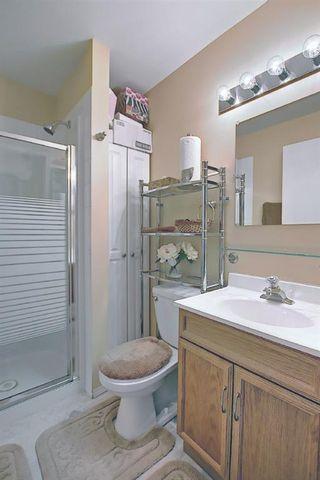 Photo 29: 179 Taravista Street NE in Calgary: Taradale Detached for sale : MLS®# A1071820