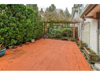 """Photo 28: 6 20875 88 Avenue in Langley: Walnut Grove Townhouse for sale in """"Terrace Park"""" : MLS®# R2541768"""