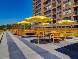 Photo 28: 508 330 26 Avenue SW in Calgary: Mission Apartment for sale : MLS®# A1100545