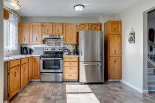 Photo 5: 14269 30 Street in Edmonton: Zone 35 House for sale : MLS®# E4261752