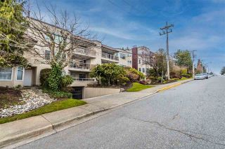 "Photo 2: 204 1225 MERKLIN Street: White Rock Condo for sale in ""Englsea II"" (South Surrey White Rock)  : MLS®# R2546584"