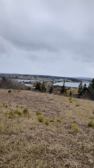 Photo 4: Lot Dogan Road in Grand Narrows: 207-C. B. County Vacant Land for sale (Cape Breton)  : MLS®# 202103787