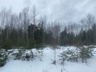 Photo 1: Danvers Road in Danvers: 401-Digby County Vacant Land for sale (Annapolis Valley)  : MLS®# 202103071
