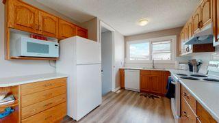 Photo 11: 17283 104 Street in Edmonton: Zone 27 House for sale : MLS®# E4253302