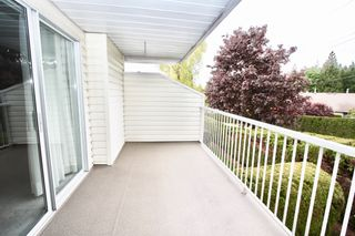 Photo 31: 52 3054 Trafalgar Street in Abbotsford: Central Abbotsford Townhouse for sale : MLS®# R2578031