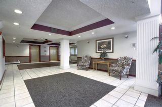Photo 28: 306 1920 14 Avenue NE in Calgary: Mayland Heights Apartment for sale : MLS®# A1050176