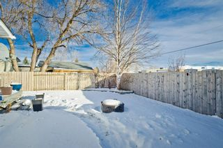 Photo 9: 231 BRENTWOOD Drive: Strathmore Detached for sale : MLS®# A1050439