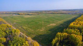 Photo 12: 17848 PRESPATOU Road in Fort St. John: Fort St. John - Rural W 100th Agri-Business for sale (Fort St. John (Zone 60))  : MLS®# C8038545