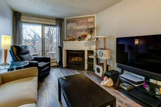 Photo 14: 4P 525 56 Avenue SW in Calgary: Windsor Park Apartment for sale : MLS®# A1092383
