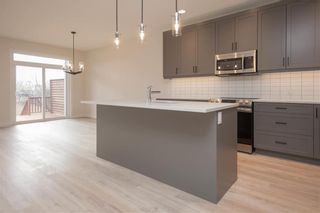 Photo 6: 6 Will's Way in East St Paul: Birds Hill Town Residential for sale (3P)  : MLS®# 202122597