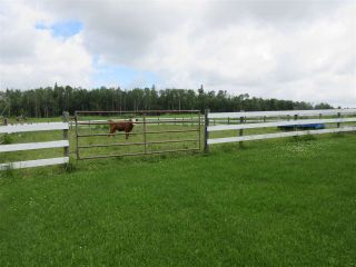 Photo 29: 27332 Sec Hwy 651: Rural Westlock County House for sale : MLS®# E4228685
