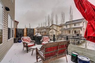 Photo 39: 9 Copperfield Point SE in Calgary: Copperfield Detached for sale : MLS®# A1100718