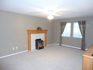 Photo 24: 9168 160A STREET in MAPLE GLEN: House for sale