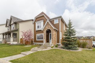 Photo 32: 25 BRIGHTONCREST Rise SE in Calgary: New Brighton Detached for sale : MLS®# A1110140