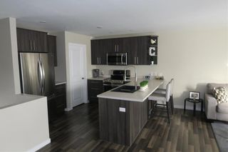 Photo 8: 46 Lilac Street in Mitchell: R16 Residential for sale : MLS®# 202028697