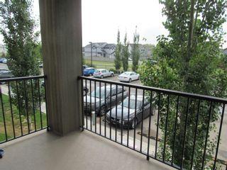 Photo 26: 207 111 WATT Common in Edmonton: Zone 53 Condo for sale : MLS®# E4259002