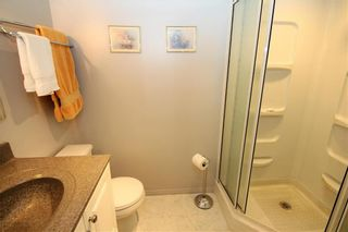 Photo 19: 378 Hawthorne Avenue in Winnipeg: Residential for sale (3F)  : MLS®# 202111293
