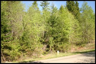 Photo 25: 21 6500 Southwest 15 Avenue in Salmon Arm: Panorama Ranch Vacant Land for sale : MLS®# 10230290
