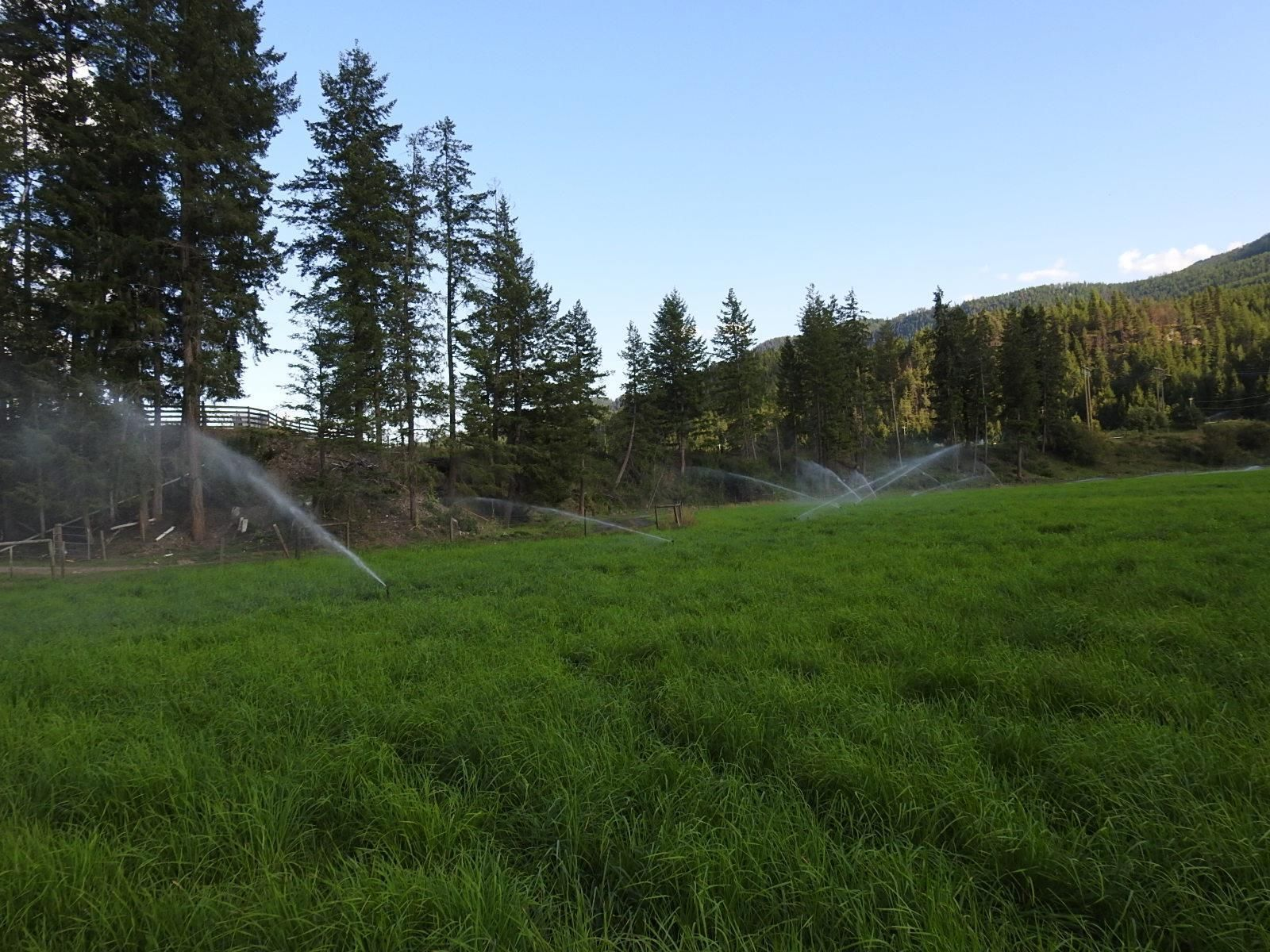 Main Photo: 1519 6 Highway, in Lumby: Agriculture for sale : MLS®# 10235803