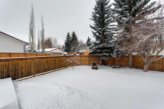 Photo 40: 303 Silver Valley Rise NW in Calgary: Silver Springs Detached for sale : MLS®# A1084837
