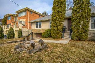 Photo 4: 26 Winlock Park in Toronto: Newtonbrook East House (Bungalow-Raised) for sale (Toronto C14)  : MLS®# C4393234