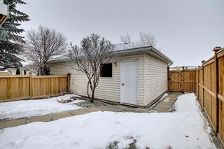 Photo 41: 185 Citadel Drive NW in Calgary: Citadel Row/Townhouse for sale : MLS®# A1066362