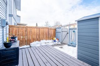 Photo 20: 6662 Temple Drive NE in Calgary: Temple Row/Townhouse for sale : MLS®# A1063811