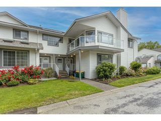 """Photo 2: 703 21937 48 Avenue in Langley: Murrayville Townhouse for sale in """"Orangewood"""" : MLS®# R2593758"""