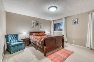 Photo 24: 15 Cranleigh Link SE in Calgary: Cranston Detached for sale : MLS®# A1115516