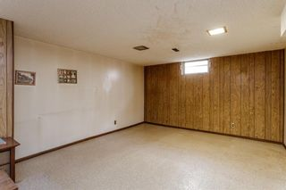 Photo 15: 4628 3 Street NE in Calgary: Greenview Detached for sale : MLS®# A1128741
