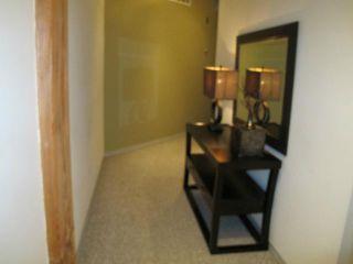 Photo 16: 167 Bannatyne Avenue in WINNIPEG: Central Winnipeg Condominium for sale : MLS®# 1118067