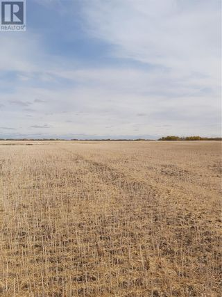 Photo 4: Rystrom Farm in Corman Park Rm No. 344: Agriculture for sale : MLS®# SK828530