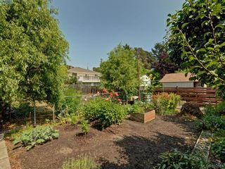 Photo 19: 1290 Camrose Cres in VICTORIA: SE Cedar Hill House for sale (Saanich East)  : MLS®# 794232