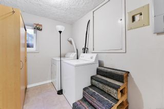 Photo 32: 4034 Elise Pl in : SE Lake Hill House for sale (Saanich East)  : MLS®# 886161